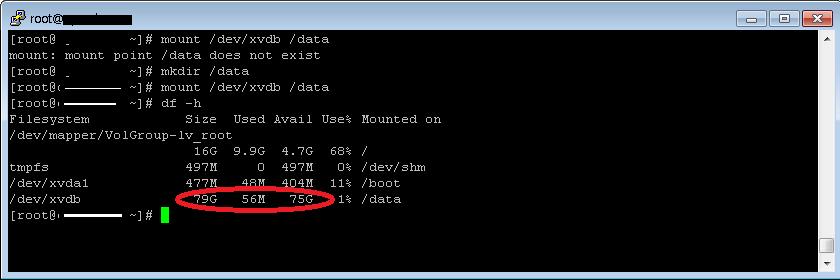 disk_mount5
