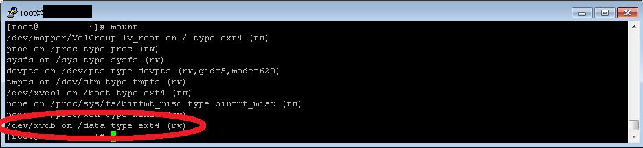 disk_mount6